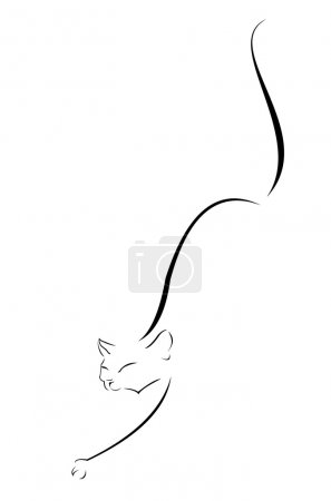 Illustration for Vector image of steal cat contour - Royalty Free Image
