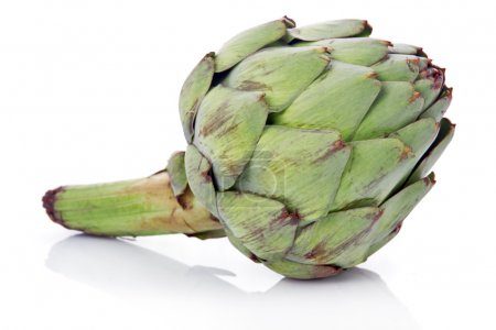 Ripe green artichoke vegetable isolated