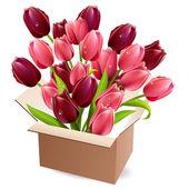 Open box full of tulips