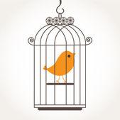 Roztomilý pták sám v klec