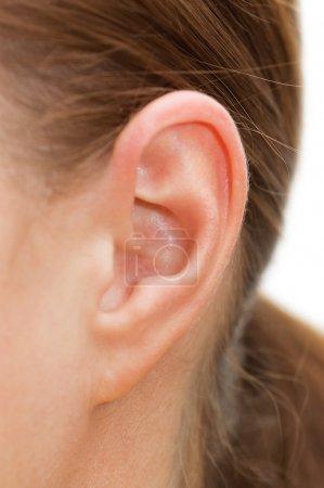 Closeup of a human ear