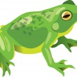 Vector illustration of a sitting green frog...