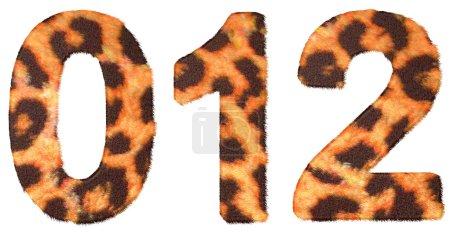 Leopard skin zero, 1 and 2 figures ioslated