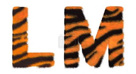 Photo pour Tiger est tombé lettres L et M isolé sur fond blanc - image libre de droit