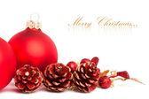 Vánoční dekorace s evropskými holly