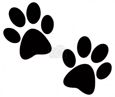 Paw prints pair...