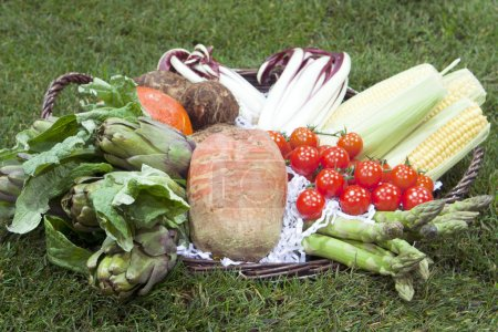 Photo for Basket of different fresh raw vegetables - Royalty Free Image