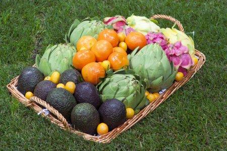 Foto de Composición fondo de frutas y verduras frescas - Imagen libre de derechos