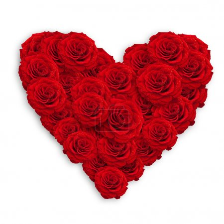 Photo for Fresh red roses in heart shape over white - Royalty Free Image