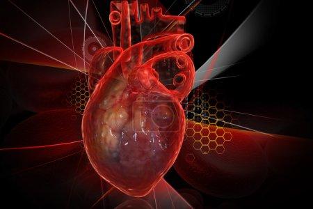 Photo pour Coeur humain avec ecg - image libre de droit