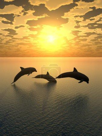 Photo pour Trois dauphins flottant à l'océan (feu de contrôle ) - image libre de droit