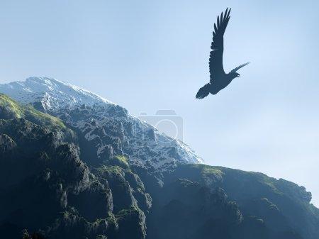 Photo pour Silhouette d'un aigle planant au-dessus des montagnes (sommets enneigés et montagnes avec un bois ) - image libre de droit