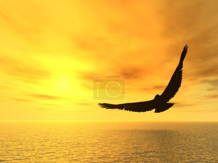 Photo for Eagle and a yellow decline. A soaring eagle above ocean - Royalty Free Image