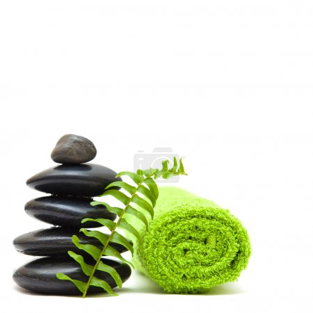 Zen concept with green leaves - alternative medicine