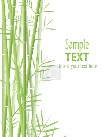 Illustration for Vector bamboo background - Royalty Free Image