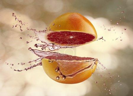 Photo pour Un fruit juteux sur le fond flou - image libre de droit