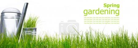 Photo pour Arrosoir avec herbe et outils de jardin sur blanc - image libre de droit