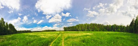 Photo for Stitched Panorama of green summer field - Royalty Free Image
