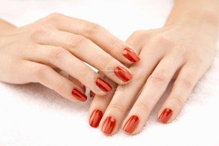 Photo pour Belles mains féminines bien entretenues avec la manucure rouge, isolées - image libre de droit
