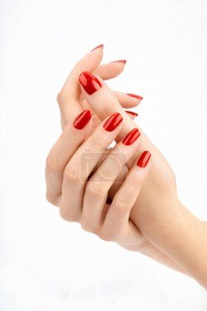 Photo pour Mains féminines bien entretenues avec la belle manucure, isolé - image libre de droit