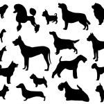 Dog breeds...