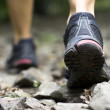 Sport shoes on trail walking in mountains...