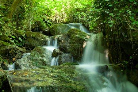 Photo pour Belle chute d'eau sur le ruisseau de la petite forêt - image libre de droit