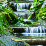 Beautiful veil cascading waterfalls, mossy rocks...