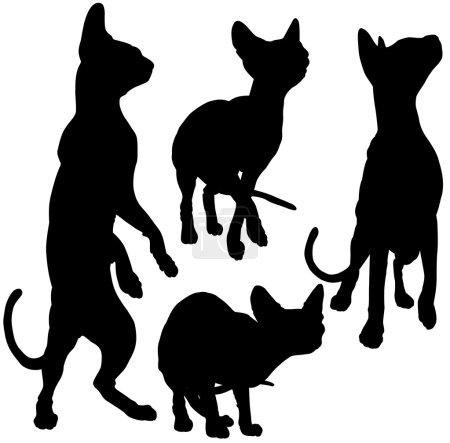 Illustration pour Silhouettes de chats en mouvement, sur fond blanc - image libre de droit