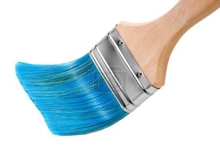 Paint brush vith blue bristles