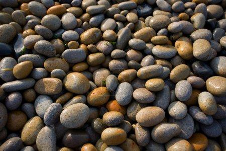 Photo pour Mer de cailloux humides - image libre de droit