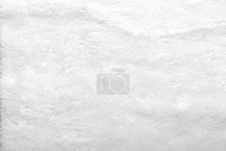 Photo pour Texture fond de fourrure blanche d'animal - image libre de droit