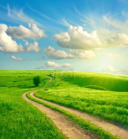 Photo pour Paysage d'été avec l'herbe verte, les routiers et les nuages - image libre de droit