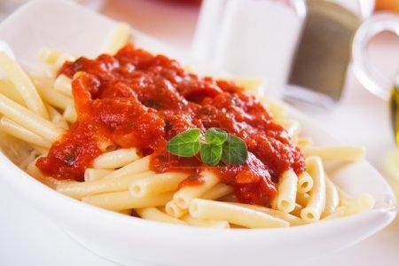 Photo pour Pâtes macaronis italienne avec sauce tomate et origan - image libre de droit