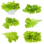 Set with lettuce salad on white background...