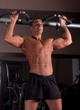 Bodybuilder exercising