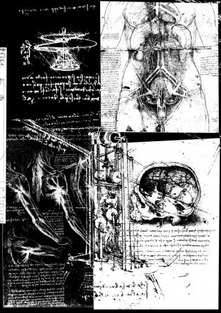Leonardos Da Vinci engineering Anatomy