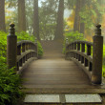 Wooden Bridge at Portland Japanese Garden in Fall ...