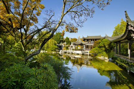 Chinese Garden by the Pond in Autumn