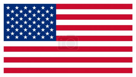 USA Stars and Stripes American Flag