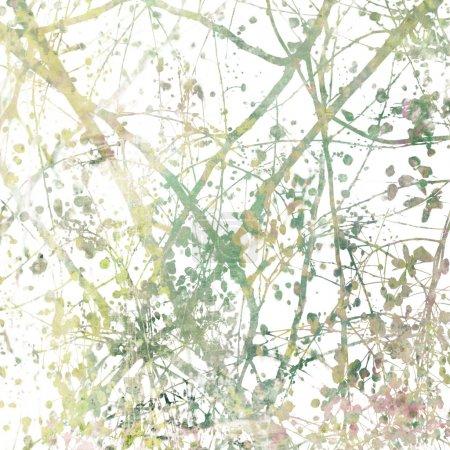 Photo pour Succursales de fleurs enchevêtrées Art Abstrait sur Blanc - image libre de droit