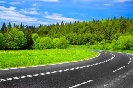 Photo for Road and green nature - Royalty Free Image