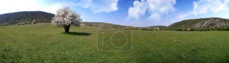 Beautiful panorama of moldavian landscape
