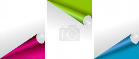 Set of three blank rectangle labels