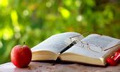 lunettes, stylo et vieux livre