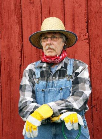 Foto de Retrato de un peón de overol paja sombrero y babero con un fondo de tablero de granero en formato vertical - Imagen libre de derechos