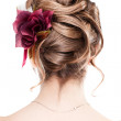 Beauty wedding hairstyle rear view isolated on whi...