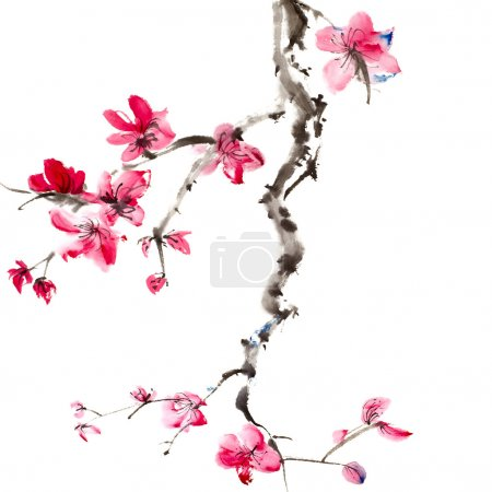Photo for Chinese painting of flowers, plum blossom, on white background. - Royalty Free Image
