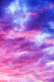 """Постер, картина, фотообои """"розовый закат небо вертикальные"""""""
