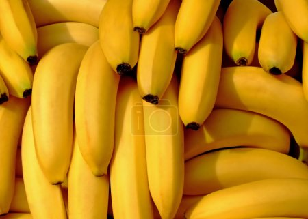 Photo for Pile of fresh organic bananas on a market - Royalty Free Image